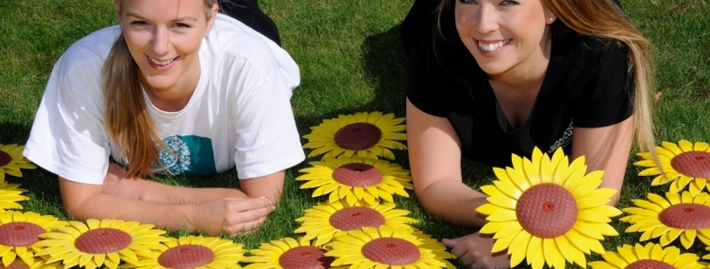 SUNFLOWER APPEAL IN POOLE PARK